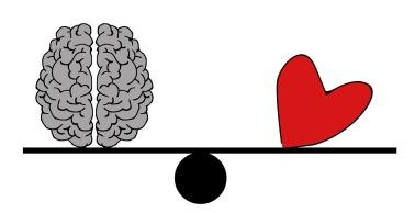 brain-2146156_960_720